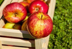 Apples, Red ,Fruit ,Ripe, Free Photo