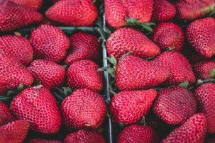 Strawberry, Free Photo,Fruits, Fresh