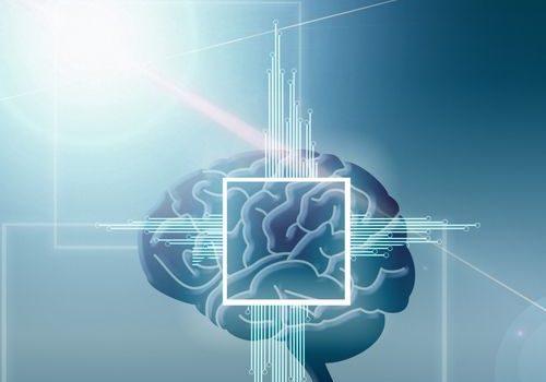 الدماغ , brain , صورة