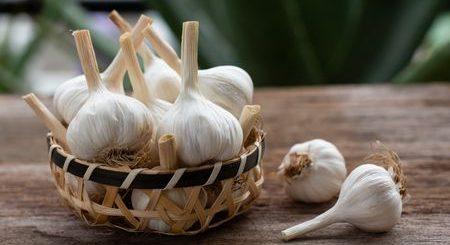 الثوم، فوائد، Garlic، صورة الثوم